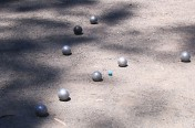 A loose grouping of Pointers. Bastille Day Tournament